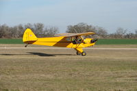 N11MK @ 1T34 - Yellow Cub - by CBaumann
