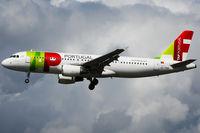 CS-TNM @ EDDH - TAP Portugal (TAP/TP) - by CityAirportFan