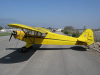 N88091 @ SZP - Locally-based 1946 Piper J3C-65 Cub @ Santa Paula Airport, CA [painted as NC88091 - by Steve Nation