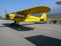 N88091 @ SZP - Locally-based 1946 Piper J3C-65 Cub @ Santa Paula Airport, CA as NC88091 - by Steve Nation