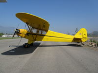 N88091 @ SZP - Locally-based 1946 Piper J3C-65 Cub @ Santa Paula Airport, CA painted as NC88091 - by Steve Nation