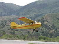 N84171 @ SZP - 1946 Aeronca 7AC CHAMPION, Continental A&C65 65 Hp, another takeoff climb sequence Rwy 22 - by Doug Robertson