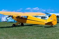 N87927 @ KOSH - Piper J/3C-65 Cub [15545] Oshkosh-Wittman Regional Airport~N 28/07/2008 - by Ray Barber