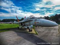 161353 - NFA-18A Hornet - by Tavoohio