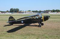 N57504 @ KOSH - Taylorcraft DCO-65