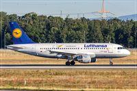 D-AILU @ EDDF - Airbus A319-114 - by Jerzy Maciaszek