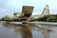 4224 @ EGVI - Lockheed C-130H Hercules [4556] (Venezuelan Air Force) RAF Greenham Common~G 24/06/1979. From a slide.