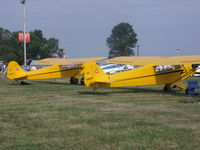 N3463K @ OSH - Piper Cub sitting next to another Cub - by Christian Maurer
