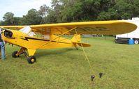 N70982 @ LAL - Piper Cub - by Florida Metal