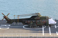 S-419 @ LMML - Eurocopter AS532 Cougar S-419 on board RN Navy ship in the Malta Grand Harbour.