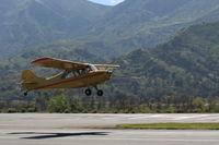 N84171 @ SZP - 1946 Aeronca 7AC CHAMPION, Continental A&C65 65 Hp, another takeoff climb Rwy 22 - by Doug Robertson