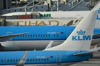 PH-BHD @ EHAM - KLM 787 AT SCHIPHOL - by fink123