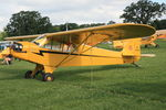 N88219 @ OSH - Piper J3C-65, c/n: 15836 - by Timothy Aanerud