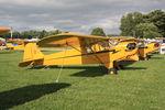 N9721Y @ OSH - Piper J3C-65, c/n: 2451 - by Timothy Aanerud