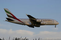 A6-EDO @ KJFK - Airbus A380-861 - Emirates  C/N 057, A6-EDO - by Dariusz Jezewski www.FotoDj.com