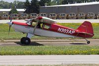 N303AP @ KOSH - Bearhawk  C/N 02-01/02-444, N303AP
