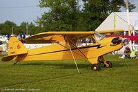 N7401H @ KOSH - Piper J3C-65 Cub  C/N 20664, NC7401H - by Dariusz Jezewski www.FotoDj.com
