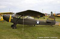 N57504 @ KOSH - Taylorcraft DCO-65  C/N 0-4466, N57504