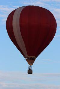 N8008P - Cameron Balloons C-60L