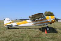 N2158C @ C77 - Cessna 195B