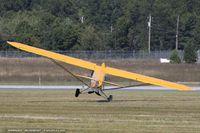 N92400 @ KBAF - Piper J3C-65 Cub  C/N 16862, N92400 - by Dariusz Jezewski www.FotoDj.com