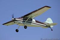 N1881C @ KOSH - Cessna 170B  C/N 26025, N1881C