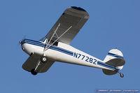 N77282 @ KOSH - Cessna 120  C/N 11724, N77282