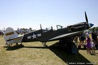 N49FG - Curtiss P-40N-5 Warhawk Suzy  C/N 42-105861, NL49FG