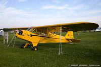 N42436 @ KOSH - Piper J3C-65 Cub  C/N 14700, NC42436
