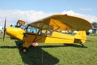 N1532V @ KOSH - Piper PA-18