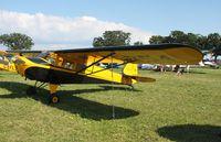N43754 @ KOSH - Taylorcraft BC12-D