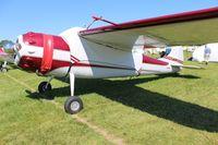 N195AK @ OSH - Cessna 195A