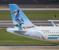 N326FR @ TPA - Skye the Blue Jay