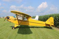 N35209 @ C55 - Piper J3C-65