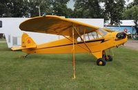 N70935 @ KOSH - Piper J-3