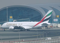 A6-EUR @ DXB - Drive to te gate of DXB - by Willem Göebel