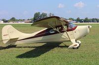 N85814 @ KOSH - Aeronca 11AC