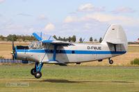 D-FWJE @ EDCB - An-2, D-FWJE at EDCB Ballenstedt - by Jan Koennig