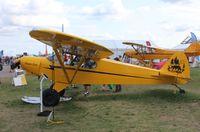 N954PC @ KOSH - Piper PA-18-135