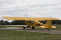 N30846 @ KOSH - Piper J3C-65 Cub C/N 5143, N30846 - by Dariusz Jezewski www.FotoDj.com