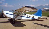 I-AEEA @ LIQN - I-AEEA   Stinson L-5 Sentinel [MM52963] Rieti~I 12/09/1999