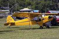 N70982 @ KLAL - Piper J3C-65 Cub  C/N 18009, NC70982 - by Dariusz Jezewski www.FotoDj.com