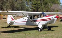 N700PA @ 5FL7 - Piper PA-12 - by Mark Pasqualino