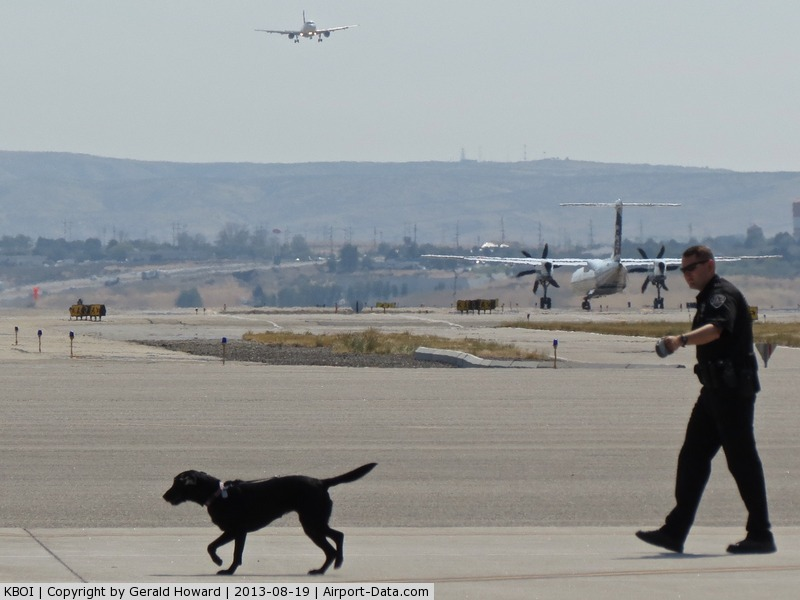 Boise Air Terminal/gowen Fld Airport (BOI) -  Boise Police explosive detection dog training on the commercial ramp.