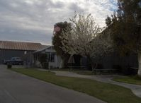 Santa Paula Airport (SZP) - Santa Paula Airport Office, Shade tree in bloom - by Doug Robertson
