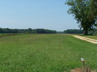 Ventosa Plantation Airport (NC66) - Location withheld - by J.B. Barbour