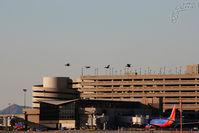 Phoenix Sky Harbor International Airport (PHX) - Pheonix - by Dawei Sun