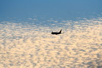 Los Angeles International Airport (LAX) - 737 departing at sunset from KLAX. - by Mark Kalfas