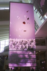 Los Angeles International Airport (LAX) - One of many faces to the clock tower located inside the new Tom Bradley International Terminal taken on LAX Appreciation Day. - by speedbrds