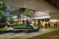 Singapore Changi Airport, Changi Singapore (WSSS) - Terminal 2, Singapore Changi International Airport - by miro susta